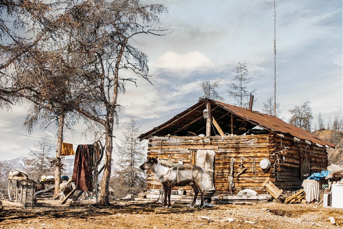 ушками якутская деревня фото солят